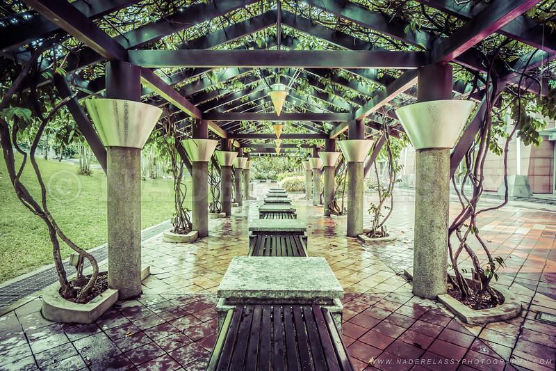 Under the Pavilion