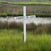 Cross in the Marsh