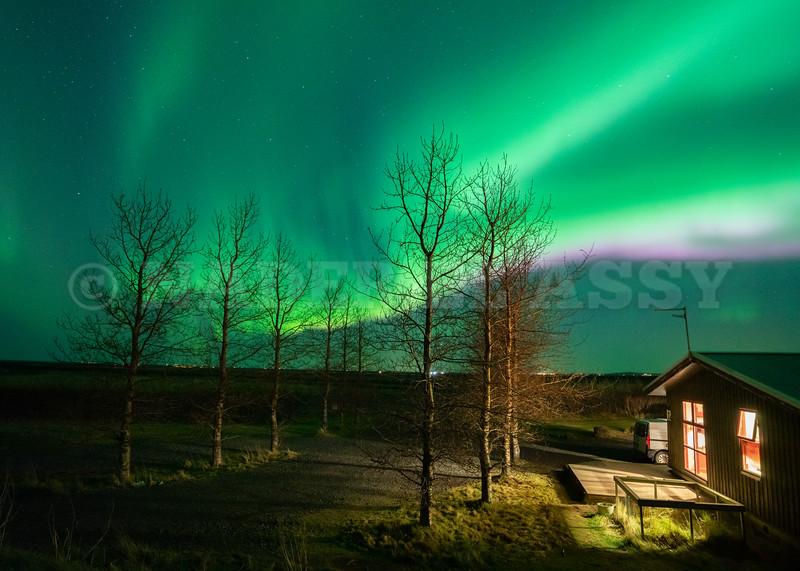 Hamragarðar Under Aurora