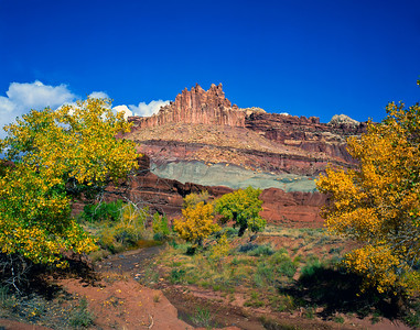Nobody, North America, USA, Utah, Capitol Reef National Park, showing The Castle along the Fremont River, and colorful Fall Cottonwoods