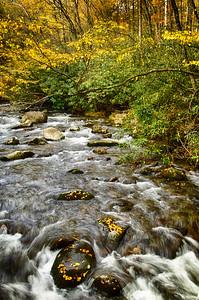 """""""Oconaluftee River #1"""""""