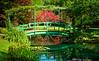 """""""Monet Bridge #3"""""""