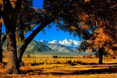 """High Sierra Farm"""