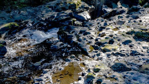 Cedar Ponds
