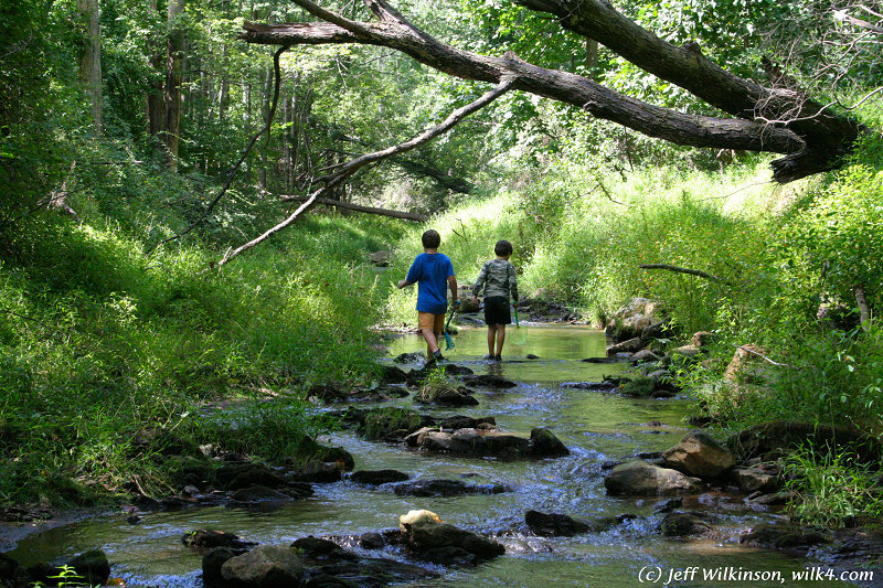 """#6343 two boys explore a stream (this photo is for sale on istockphoto, #<a href=""""http://www.istockphoto.com/file_closeup.php?id=2188170?refnum=jwilkinson"""">2188170</a>)"""