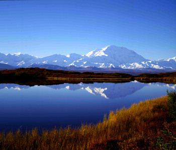 Denali across reflecting pond with fall colors III
