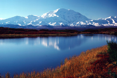Denali across reflecting pond with fall colors IV