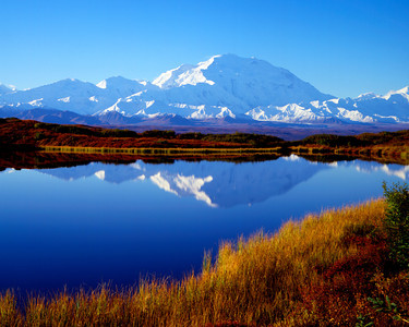 Mount McKinley (Denali) in Denali N. P. Alaska, Reflected in Pond II