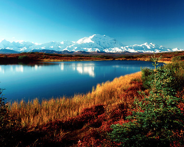 Denali across reflecting pond with fall colors