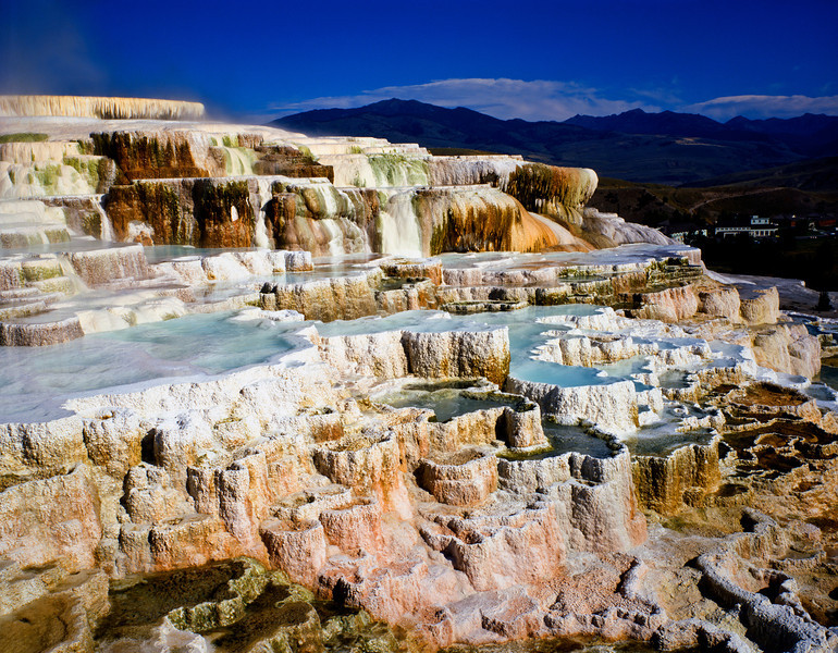 Nobody, North America, USA, Wyoming, Yellowstone National Park, Mammoth Hot Springs, Minerva Terrace