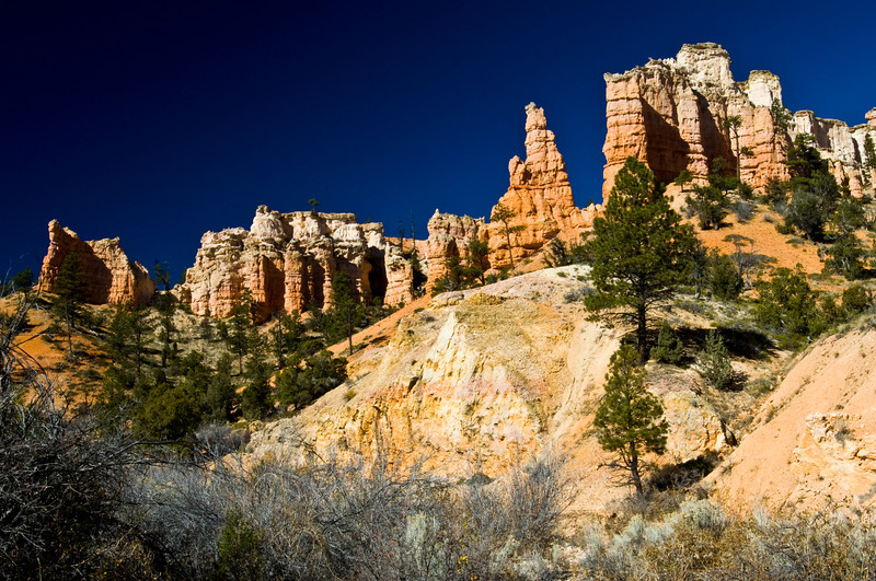 Nobody, North America, USA, Utah, Red Canyon, Oasis of Red Rock in Dixie Forest along Scenic Byway, Utah Highway 12