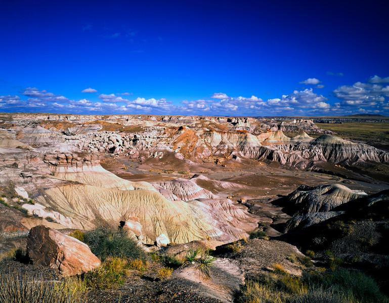 Nobody, North America, USA, Arizona, Petrified Forest National Park, Blue Mesa Overlook