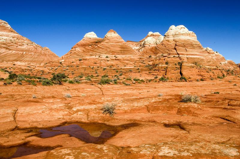 Nobody, North America, Swirled Cupcake Pinnacles, Coyote Buttes, Arizona