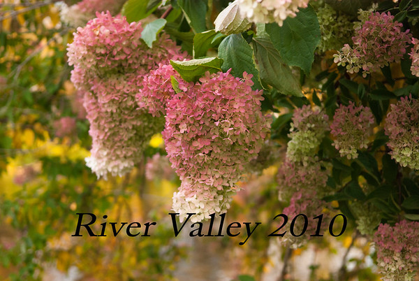 River Valley 10