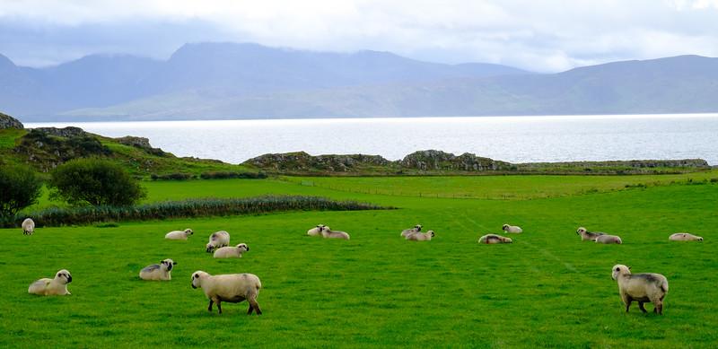 Garrochty, Isle of Bute, Scotland