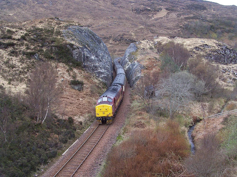 37401, Polnish. April 2009.