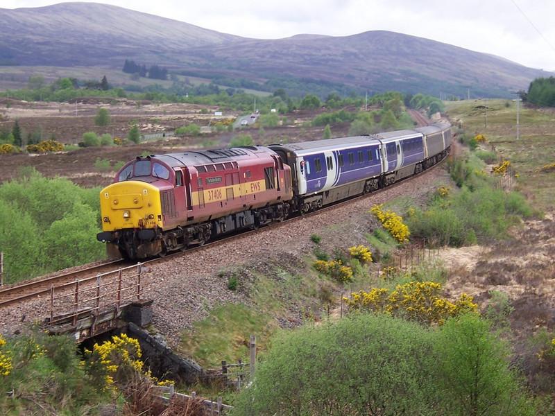 37406, Achnabobane. April 2006.