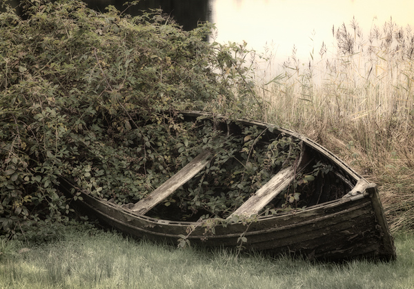 Lonely Rowboat - Loch Ard, Scotland