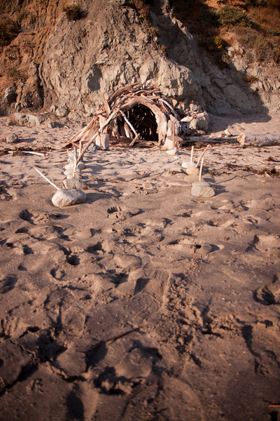 You can always find interesting driftwood architecture on the beach at Andrew Molera.
