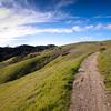 Stretch of trail in Palo Alto's Monte Bello Open Space Preserve