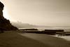 20110125_Beach_08