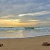Sea Turtle HDR 018
