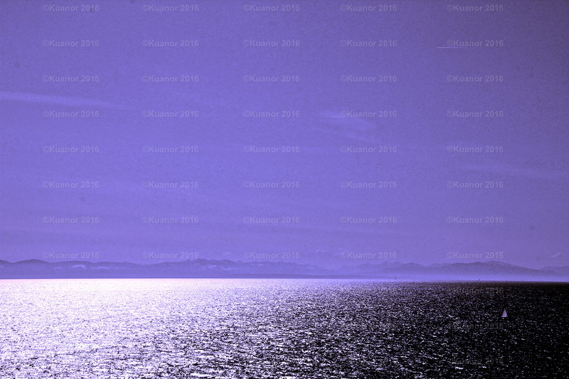 Violet Inviolate