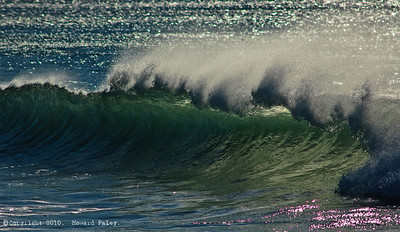 """Ocean Spray"", Newport Beach, Ca., 12/08/07"
