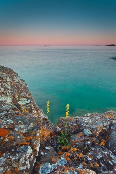Isle Royale, MI