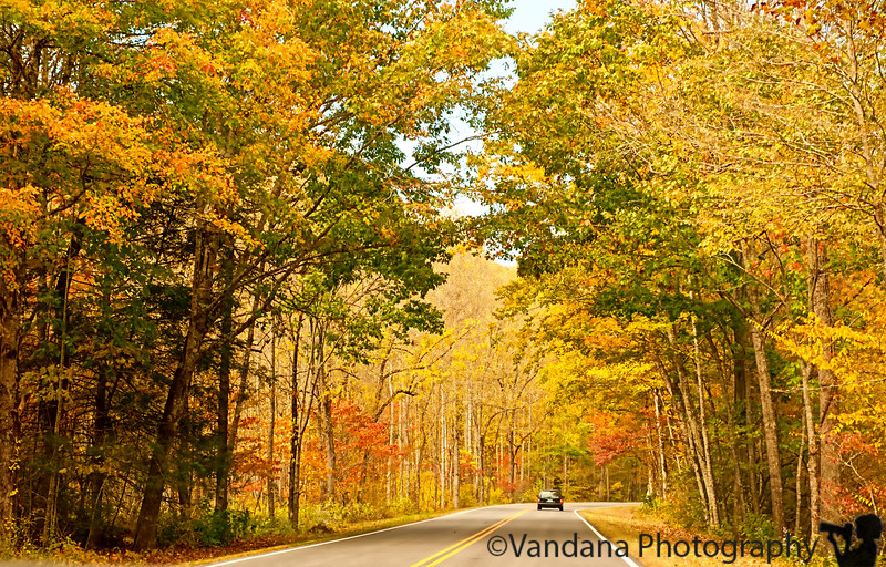 October 13, 2011 - Fall in Smoky Mountain National Park, TN<br /> <br /> thank you for all the wonderful comments on my fall pictures !
