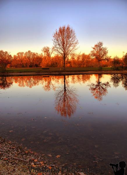 November 5, 2009 - Quiet reflections