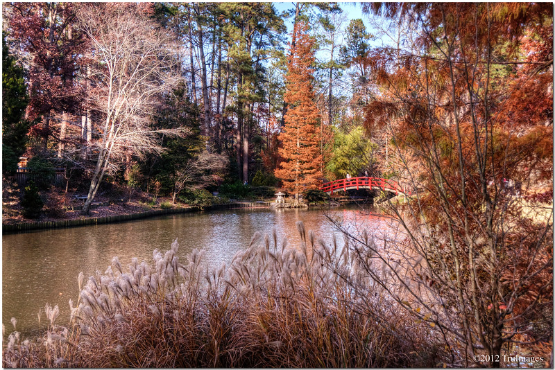 Dec 3<br /> Over the river. . .to grandmother's house we go!<br /> <br /> A fall scene from Duke Gardens on the campus of Duke University. Best viewed in size X3<br /> <br /> Thanks for viewing and commenting!!