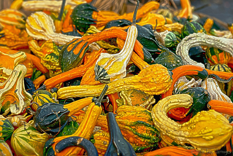 Gourds and Warts