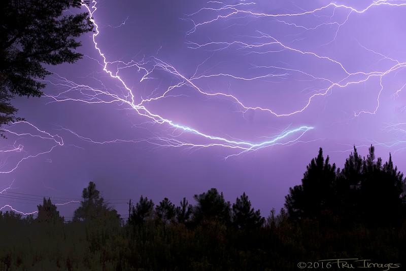 My Name is Bolt, Lightning Bolt!