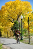 A bicyclist enjoys an Autumn ride on the pedestrian/bike path.