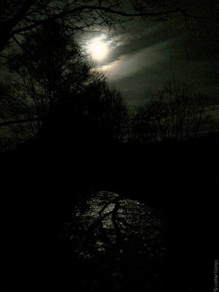 Mondsüchtig 3