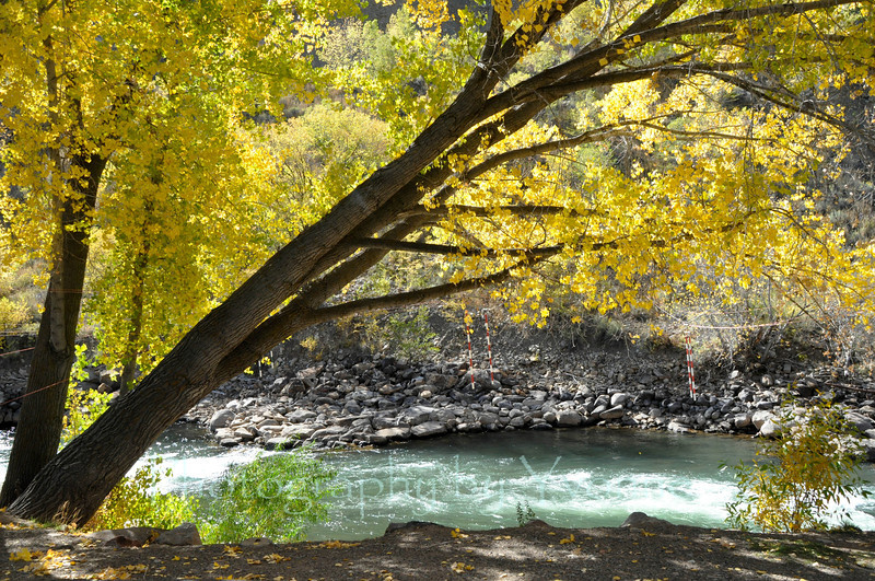 Smelter Rapids on the Animas River.