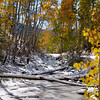 Aspen & frozen pond along Old Lime Creek Road. October 2011