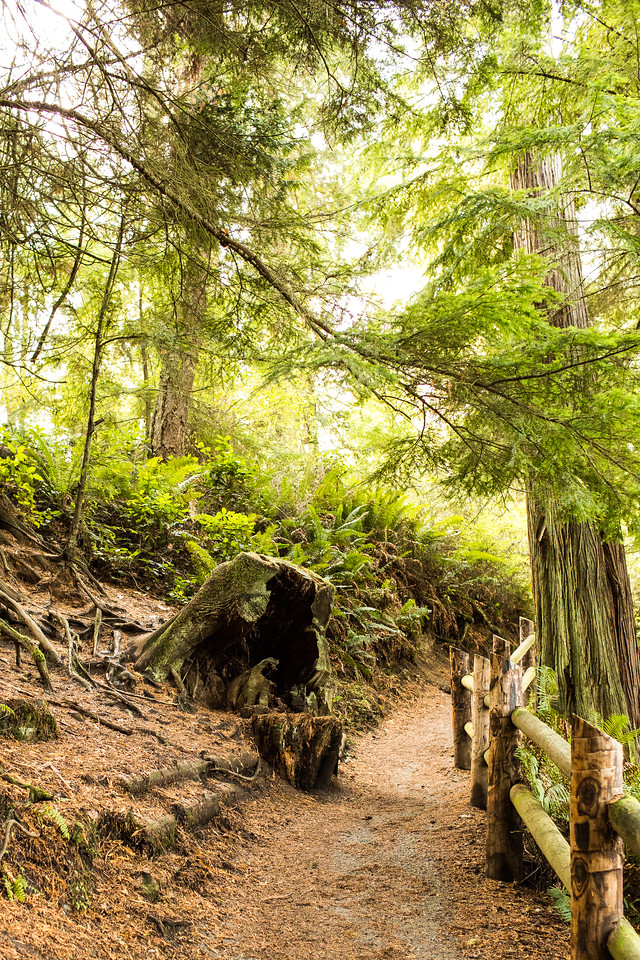 Trails at Deception Pass