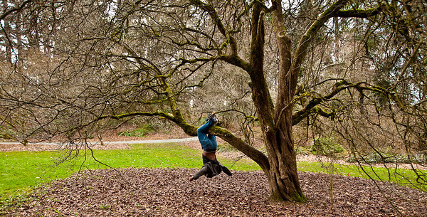 Seattle Arboretum-23