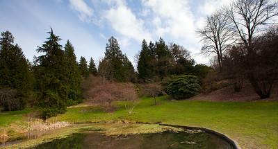 Seattle Arboretum-40