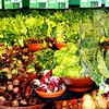 Fresh Fruit and Vegetable Market in Sedona Arizona 2