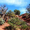 Hike near Sedona Airport in Arizona