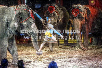 HDR-FINISHED-Circus_1