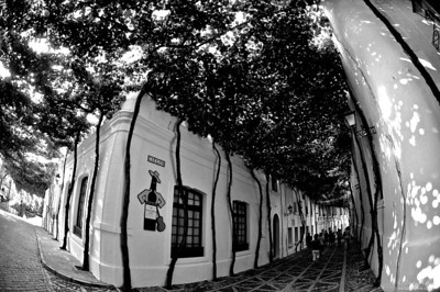 """Blind Alley #6"" Vineyard Tio Pepe, Jerez De la Frontera, Spain Viñeros Tio Pepe, Jerez De La Frontera, España @2013 nariophotos.com  If you enjoy our images, Like Our Page / Like & Share Our Photos  Spain photo shoot"