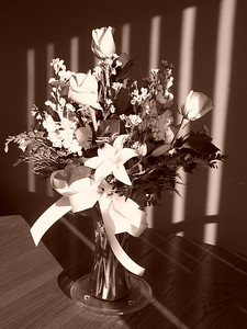 Vday Bouquet 2.14.08