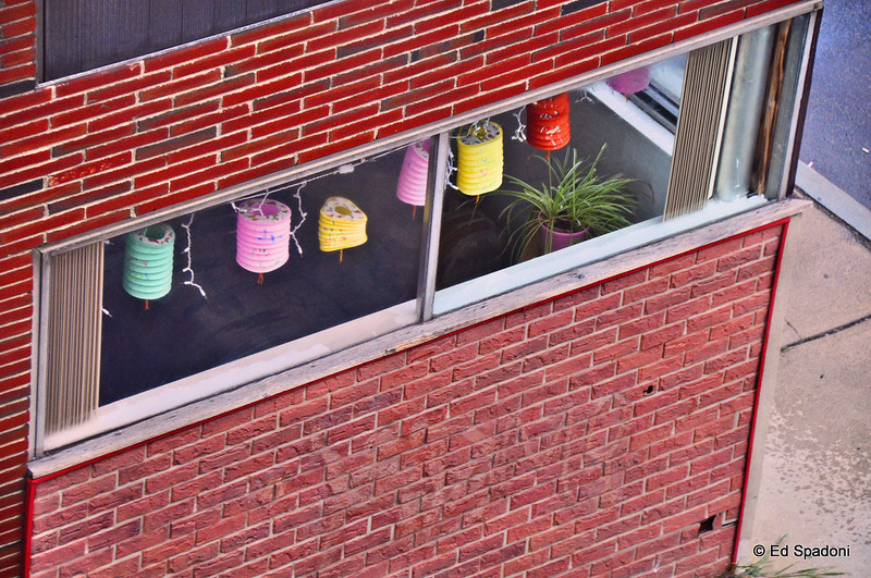 Chinese lanterns and the faux brick wall