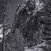 Tokopah Falls Trail (2)-SNP_0916__DSC3269
