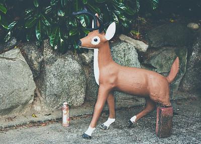 Deer Repairs
