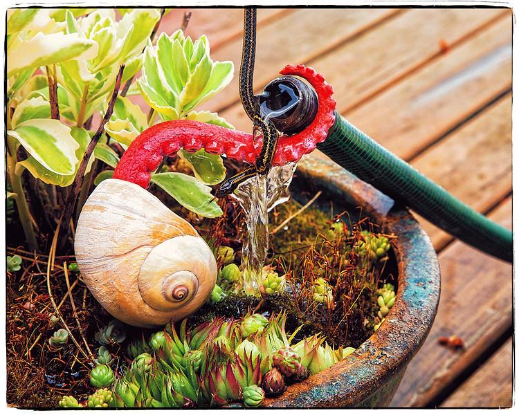 Gardenhose Patio Party